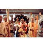 Devotees Throw Flower Petals at Srila Prabhupada in Temple