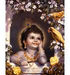 Krishna and Parrots