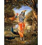 Krishna in the Forest