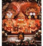 Sri Sri Gaura Nitai - Devasadana Mandir - Detroit, Michigan