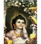 Krishna and Parrots Greeting Card Pack of 10